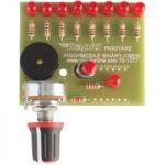 Piggyaxe Binary Timer Kit