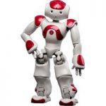 NAO Robot Academic Edition Red