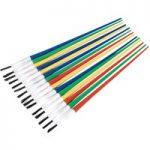 Sealey PB1 Touch-Up Paint Brush Assortment 24pc Plastic Handle