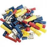 Draper 50002 50 Piece Terminal Assortment